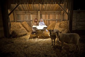 """Unique Holiday tradition """"Living Nativity"""" returns to Searcy this weekend"""